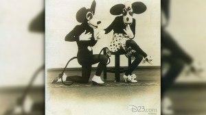 Weird Mickey III b