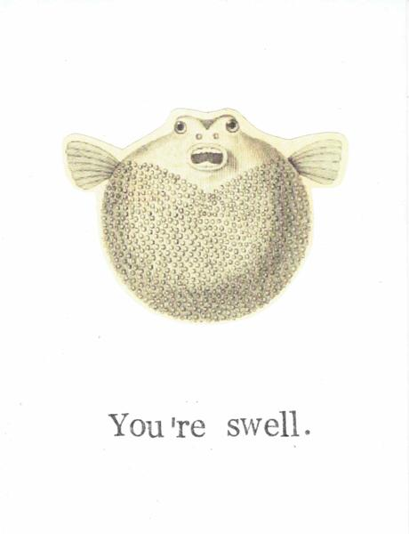 Your swell